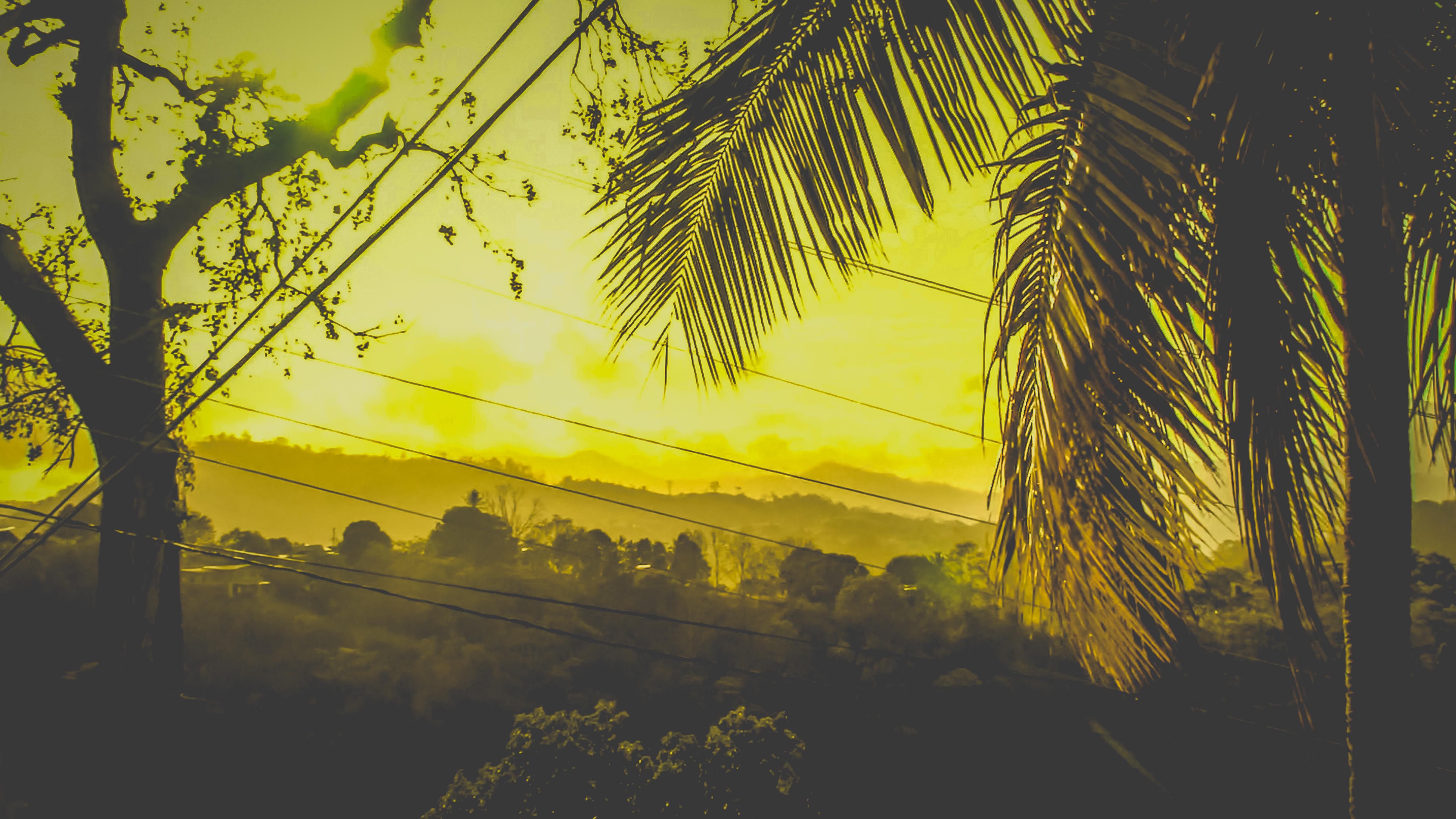 early-morning-sun